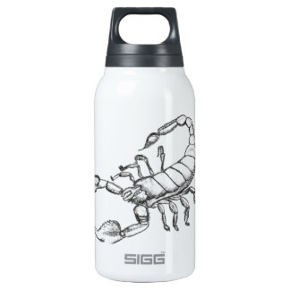Scorpion 0.3 Litre Insulated SIGG Thermos Water Bottle