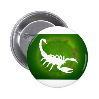 SCORPION GREEN BACKGROUND PRODUCTS PINBACK BUTTON