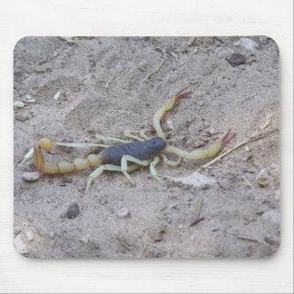 Scorpion Mouse Pads
