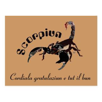 Scorpiun 24 more october fin 22 November postcard
