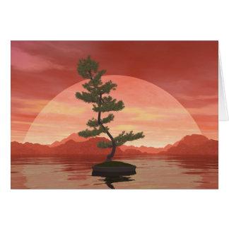 Scotch pine bonsai tree - 3D render Card