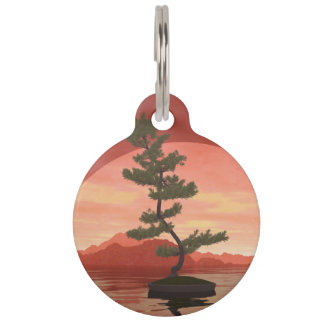 Scotch pine bonsai tree - 3D render Pet Name Tag