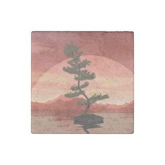 Scotch pine bonsai tree - 3D render Stone Magnet