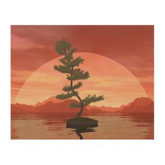 Scotch pine bonsai tree - 3D render Wood Print