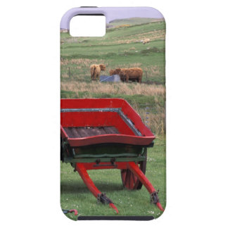 Scotland, Isle of Skye, Kilmuir. Farm animals iPhone 5 Case