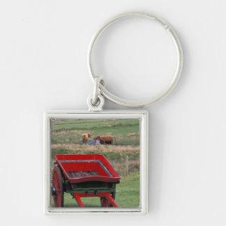 Scotland, Isle of Skye, Kilmuir. Farm animals Key Ring