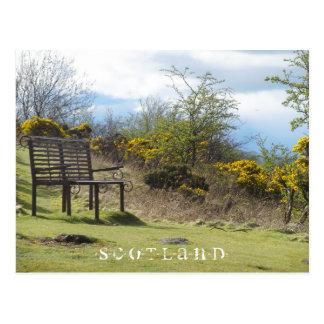 Scotland - Stirling (Floral Bench) Postcard