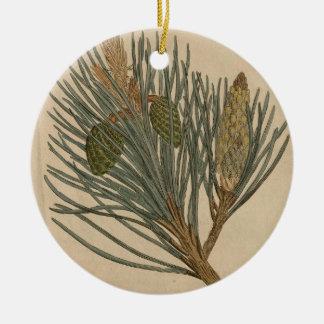Scots Pine Ceramic Ornament