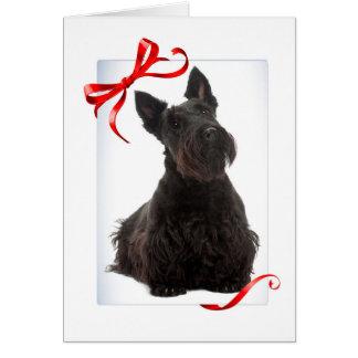 Scottie Christmas Card