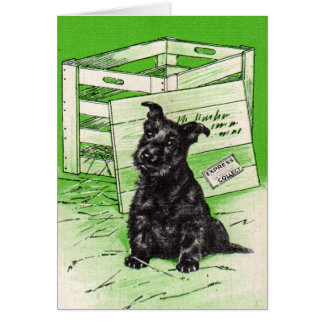 Scottie dog by special delivery card