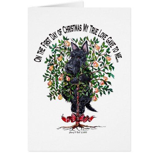 Scottie in a Pear Tree Cards