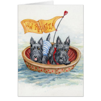 Scottie Regatta sailing team Card