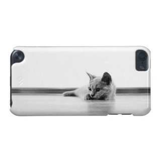 Scottish Fold Kitten Cat Super Cute iPod Touch 5G Cover