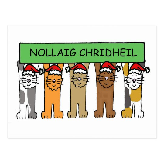 Scottish Happy Christmas Cats Postcard