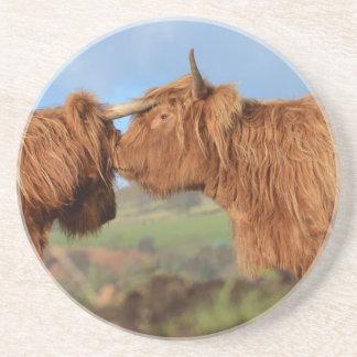 Scottish Highland Cattle Coaster