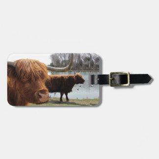 Scottish Highland Cattle ~ Luggage Tag