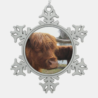 Scottish Highland Cattle ~ Pewter ornament