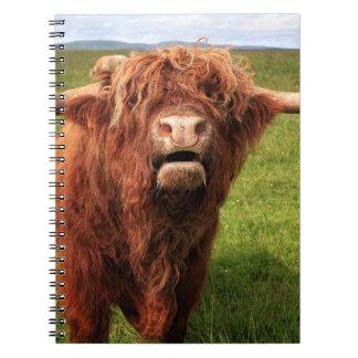 Scottish Highland Cattle - Scotland Notebook