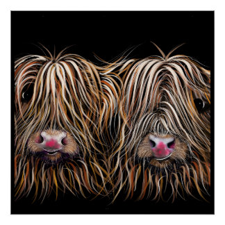 SCoTTiSH HigHLaND CoW ' BiLL & TeD ' by SHiRLeY Poster