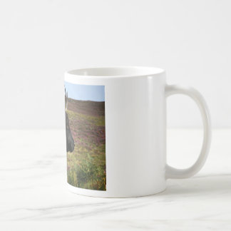 Scottish Highland Cow - Scotland Coffee Mug