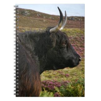 Scottish Highland Cow - Scotland Notebooks
