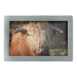 Scottish Highland Cow - Scotland Rectangular Belt Buckles