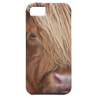 Scottish Highland Cows - Scotland Case For The iPhone 5
