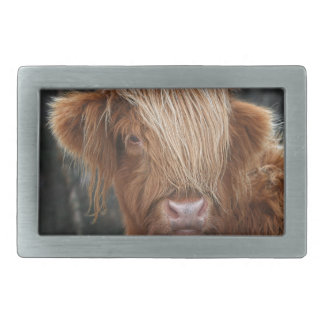 Scottish Highland Cows - Scotland Rectangular Belt Buckle