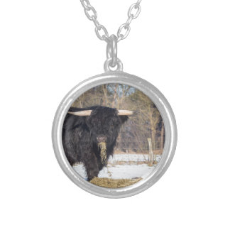 Scottish highlander bull eating hay in winter snow silver plated necklace