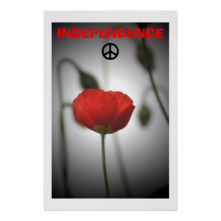 Scottish Independence Red Poppy Peace Poster