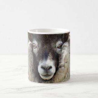 Scottish Sheep Coffee Mug
