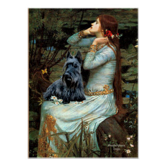 Scottish Terrier 2 - Ophelia Seated Poster
