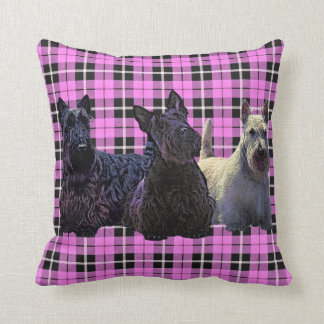 Scottish Terrier black/wheaten, baby pink plaid Cushion