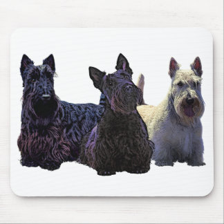 Scottish Terrier black/wheaten trio, black dog Mouse Pad