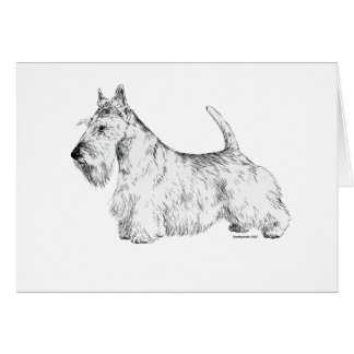 Scottish Terrier Card
