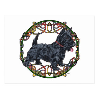 Scottish Terrier Celtic Knotwork Postcard