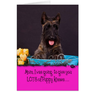 Scottish Terrier Licker License Card