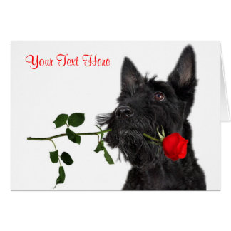 Scottish Terrier  Puppy Red Rose Valentine Design Card