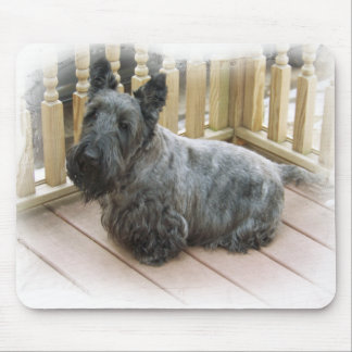 SCOTTISH TERRIER SCOTTIE DOG MOUSEPAD