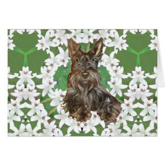Scottish Terrier White Flowers Card