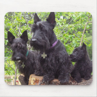 Scottish Terriers Mouse Pad