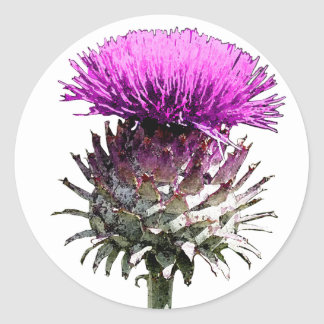 Scottish Thistle Classic Round Sticker