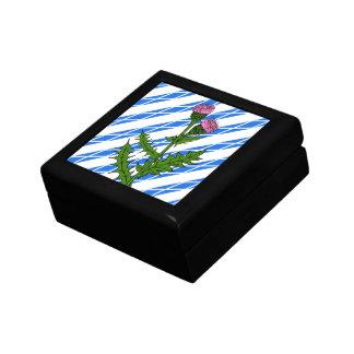 Scottish thistle gift box