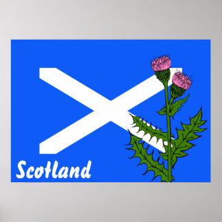 Scottish thistle poster