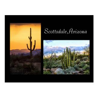 Scottsdale landscape duet postcard