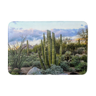 Scottsdale Succulent Sunset Bath Mat
