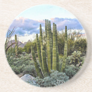 Scottsdale Succulent Sunset Coaster