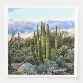 Scottsdale Succulent Sunset Disposable Serviettes