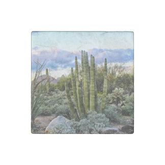 Scottsdale Succulent Sunset Stone Magnet