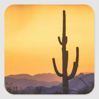 Scottsdale sunset before the storm square sticker